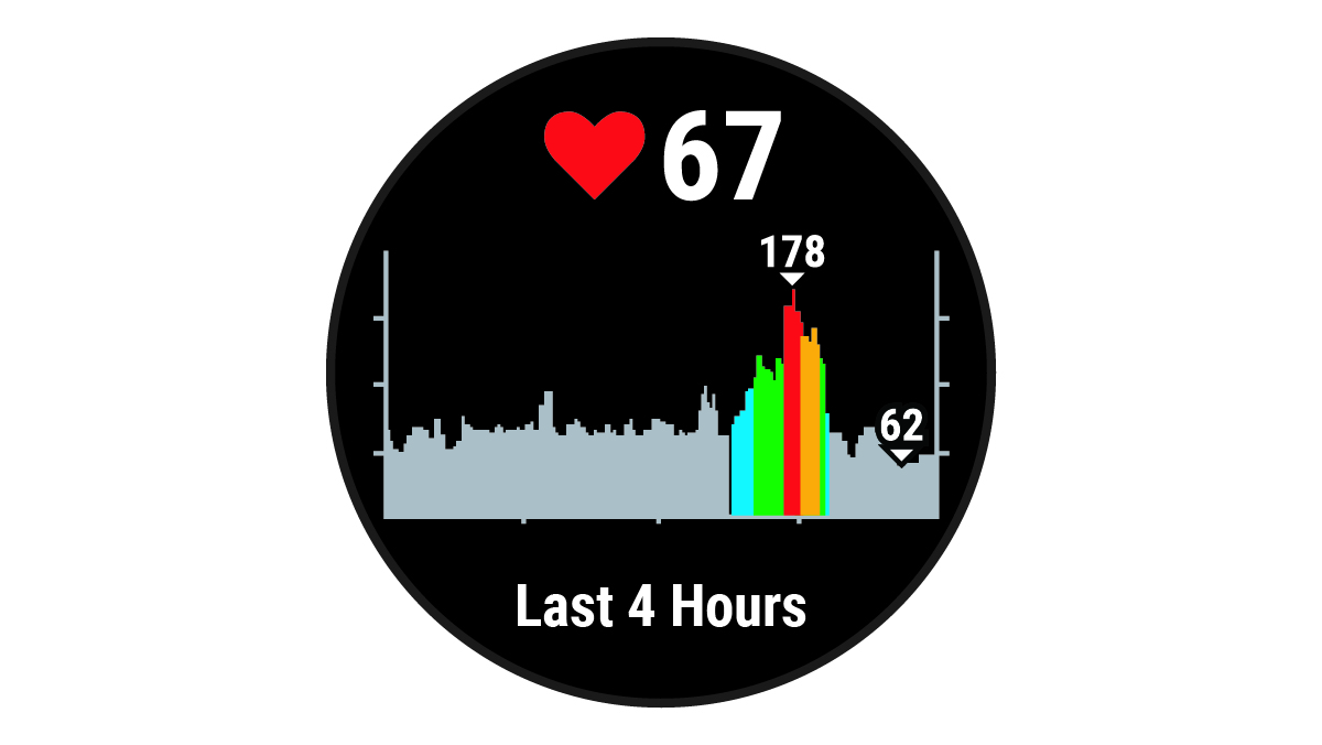 Forerunner 45 - Viewing the Heart Rate Widget